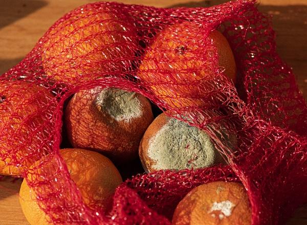Inovações na gestão de desperdício de alimentos em indústrias de serviços alimentícios