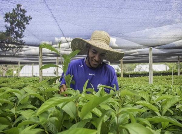 Agroecologia é saúde. Confira a entrevista com o Greenpeace