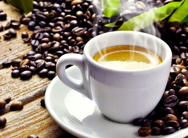 Sebrae realiza Seminário sobre Café com produtores e especialistas